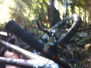Fromme crash