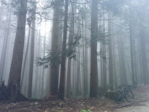 Ghost ride on Fromme