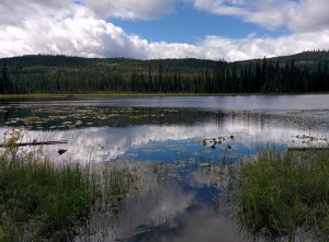 McGillivray Lake