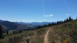 End of Buck Mountain trail